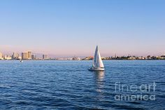 'Top Destination San Diego' Photograph by Christine Till Fine Art Prints for Sale at http://fineartamerica.com/featured/top-destination-san-diego-christine-till.html and at http://pixels.com/featured/top-destination-san-diego-christine-till.html NEW! Now 'Top Destination San Diego' can also be commercially licensed at http://licensing.pixels.com/featured/top-destination-san-diego-christine-till.html