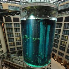 Biggest aquarium,Berlin