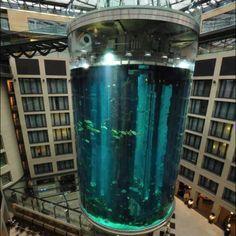 Biggest aquarium,Berlin