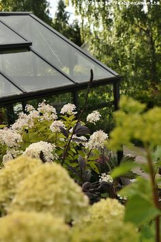 Versoja Vaahteramäeltä Garden, Home Decor, Garten, Decoration Home, Room Decor, Lawn And Garden, Gardens, Gardening, Home Interior Design