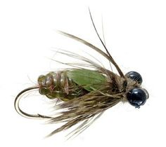Dragon Nymph Fly for my husband the fly fisher :)