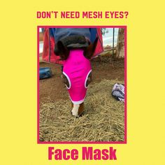 Need to protect from the sun or add a bit of colour when you ride? We have face masks without mesh Horse Fly, Face Masks, Mesh, Horses, Colour, Sun, Color, Calla Lily, Facial Masks