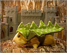 Guinea pig in dragon costume.