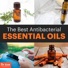 Antibacterial essential oils - Dr. Axe