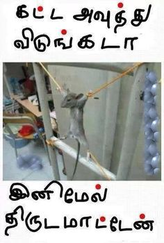 tamil funny joke and comedy Tamil Jokes, Tamil Comedy Memes, Comedy Quotes, Funny Quotes, Funny Memes, Good Thoughts Quotes, Good Life Quotes, Comedy Pictures, Funny Pictures