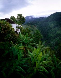 If I can't have a cottage on the beach, then I want a little white cottage on the hills overlooking a tropical forest