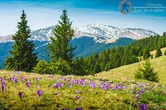 A beautifut weather for hiking. Mount Rainier, Travel Photography, Hiking, Europe, Weather, Mountains, Nature, Walks, Naturaleza