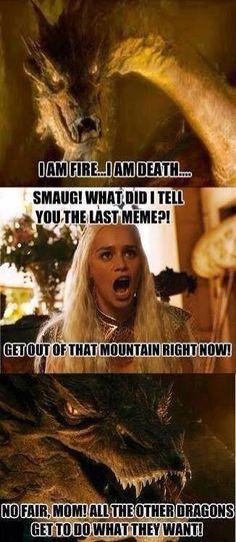 "Smaug: ""I am Fire… I am Death…"" Daenerys: ""Smaug! What did I tell you the last meme?! Get out of that mountain right now!"" Smaug: ""No fair, mom! All the other dragons get to do what they want."""