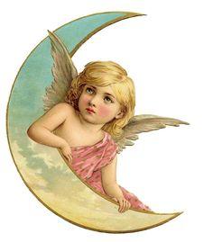 ❥ angel