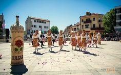 Rose Festival in Karlovo