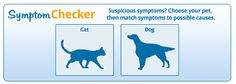 FREE Pet Symptom Checker! Pet Insurance Reviews, Best Pet Insurance, Pets, Free, Animals And Pets