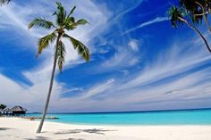 The Maldives are so beautiful ♥