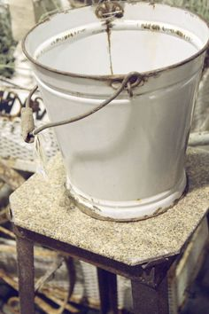 ". I love my enameled bucket. ""The Magic White Bucket"" we call it, all the critters know & worship it."