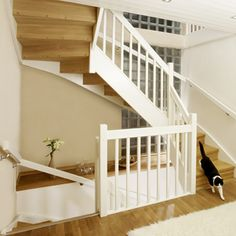 The stairs we have chosen for the house (cat not included). Needs to be the same color as the floors.