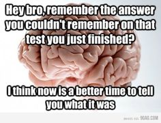 Hey bro, remember the answer you couldn't remember on that test you just finished? I think now is a better time to tell you what it was Scumbag Brain Scumbag Brain, Brain Meme, My Brain, I Love To Laugh, Make Me Smile, Easy French Twist, No Kidding, College Problems, Hey Bro