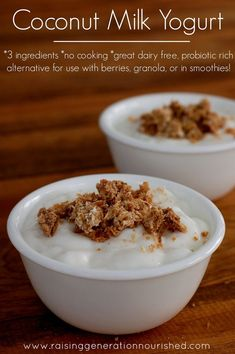 Coconut Yogurt :: 3 Ingredients, No Cooking, & A Great Probiotic Rich Dairy Free Alternative!