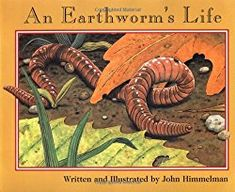 Worm anatomy...hands-on science lesson for preschoolers!