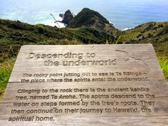 Cape Reinga - Bay of Islands