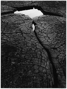 by Ansel Adams, Lava Rock and Pool, Kona Coast, Hawaii, 1956 Black And White Landscape, Black N White Images, Famous Photographers, Landscape Photographers, Ansel Adams Photography, Photography Lessons, Urban Photography, Color Photography, Portrait Photography