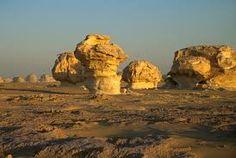 Resultado de imagen de oasis desierto