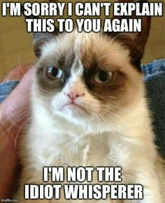Grumpy cat is always a good way to convey emotions