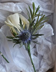 scottish thistle | Rose, thistle and rosemary make a gorgeous buttonhole for the men.