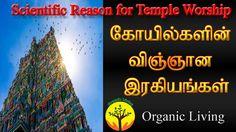 Scientific Reason behind Temple Worship   கோயில்களின் விஞ்ஞான ரகசியம்  Organic Living