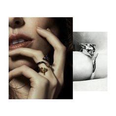 Lamorne Ring #rexcat #cat #catring #cornishrex #blackgold #yellowgold #finejewellery #annalubomirska