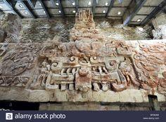 Mayan Language, Maya Architecture, Mayan Cities, Black Jaguar, Tikal, Cow, Ceiling Lights, Stock Photos, Maya Civilization