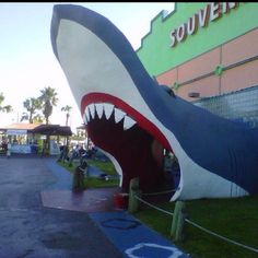 Orange Beach,Alabama - crazy huge shop - kidos needed petrified sharks!
