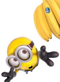 Du bekommst die Staude Bananen  nicht, nein nein nein... ! - Warum? - Weil du heute schon eine hattest, so und jetzt hör' auf hier rumzuhopsen!