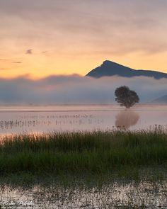First light gently illuminates the lake transforming the cold blue pre sunrise light to a warm embracing moment. Lake Stymfalia / Corinthos / Greece