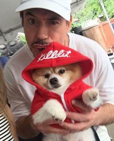 Awww! Cute dog!