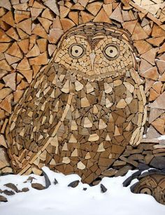 82-year-old Gary Tallman of Monarch, Montana, uses his stacked firewood to create amazing wooden mosaics featuring owls…