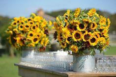 Lewis Miller Designs Yellow Sunflowers