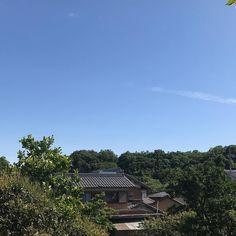 今日も一日素晴らしいいい天気でした