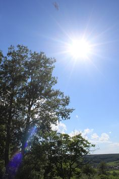 Blue Sky, Sun, Clouds and Trees – Summer - Public Domain Photos, Free Images for Commercial Use Sun And Clouds, Sun Kissed, Public Domain, Free Images, Sunrise, Presentation, Commercial, Trees, Magic