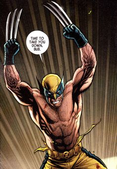 The Savage Wolverine by Frank Cho