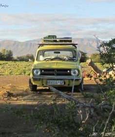 1982 Mini - Pumba. Set to travel from JHB - Kenya to raise funds and awareness for ECD centres in Vhembe Limpopo