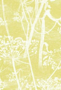 Cow Parsley by Cole & Son.