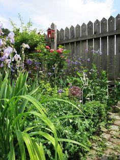Heute sind wir mal wieder bei einer lieben Bloggerin zu Gast: Bei Stephanie, die auf Ihrem Blog Fatto Incasa über ihren Garten und sein...