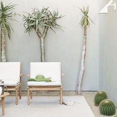 A l f r e s c o | we are loving this colour pallet   #littlethingsinteriors #interiors #design #interiordesign #interiorstyling #interiorstyle #inspo #inspiration #beautiful #dreamy #love #picoftheday #pintrest #fab #sydney #beautiful #inspo #inspiration #alfresco #outdoor #plants #cactus #chair #mint #green #unique  #succulent #sun #newzealand #australia #simple #simplistic #olive
