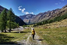 Christine-Neder-Meraner-Höhenweg in 5 Tagen