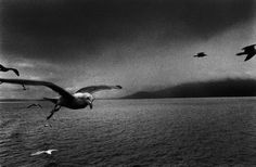 Josef Koudelka (b. January is a Czech photographer. Josef Koudelka was born in 1938 in Boskovice, Moravia. He began photogr. Magnum Photos, Book Photography, Street Photography, Photography Lessons, Documentary Photography, Landscape Photography, Gelatin Silver Print, Photographer Portfolio, Foto Art