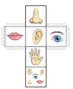 Body Parts Preschool Activities, Five Senses Preschool, 5 Senses Activities, Educational Activities For Toddlers, My Five Senses, Body Preschool, Preschool Writing, Preschool Themes, Montessori Activities