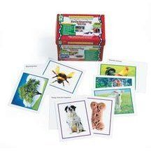 Photo Learning Cards - Early Learning Skills 227 Cards by Carson-Dellosa Publishing. $47.99. Photographs are an effective teaching tool that can be used to help children develop a wide range of language skills. These cards are specially categorized to help children develop expressive and receptive language skills engage in stimulating conversatio