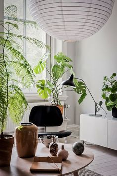 Plants And A Paper Lantern In A Tranquil, Light Filled Swedish Home
