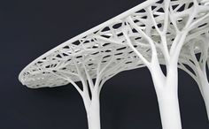 """Trabecula Bench    by FreedomOfCreation    Trabecula bench was inspired by the inner side and low density part of a bird bone. The structure is very light weight, but the 3-dimensional structure makes it still extremely strong. Trabecula is Latin for """"small beam"""". The near 2 meter length of the bench makes it the biggest Laser Sintered piece designed by Janne Kyttanen thus far."""