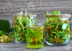 Mason Jars, Glass Vase, Spices, Herbs, Decor, Aromatherapy, Spice, Decoration, Mason Jar