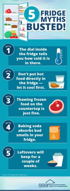 5 fridge myths — busted! Should you put hot food directly into the fridge or let it cool first? Is thawing frozen food on the countertop OK? Does baking soda really kill odors? Here's what you need to know to help keep your food fresh and your family safe. Visit the Sears Home Services blog to bust these fridge myths and more, plus need-to-know fridge maintenance and food storage safety tips.